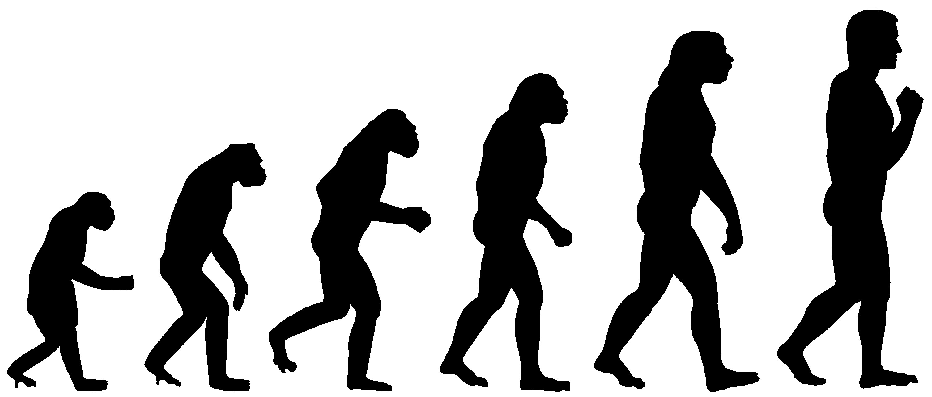 Is Evolution Rational?